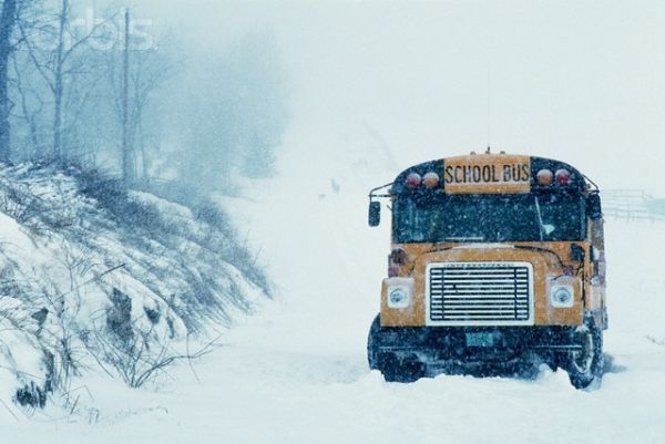 Snowy-School-Bus